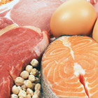 Dietary Protein Benefits and Importance for the Elderly